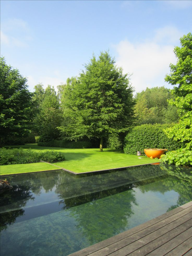 Swimming Pool Ideas Tuinarchitectuur Verbruggen Home