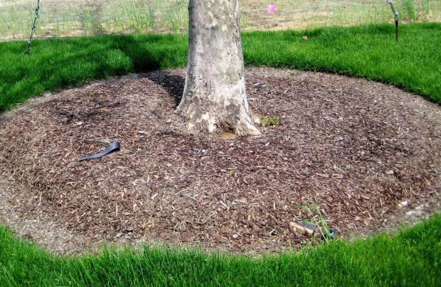 soil mulching