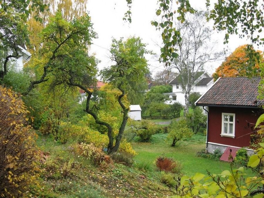garden care in autumn
