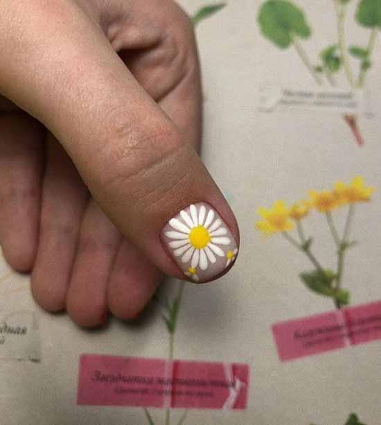 Chamomile manicure