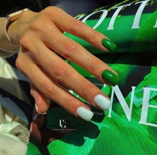 Short nails translucent design